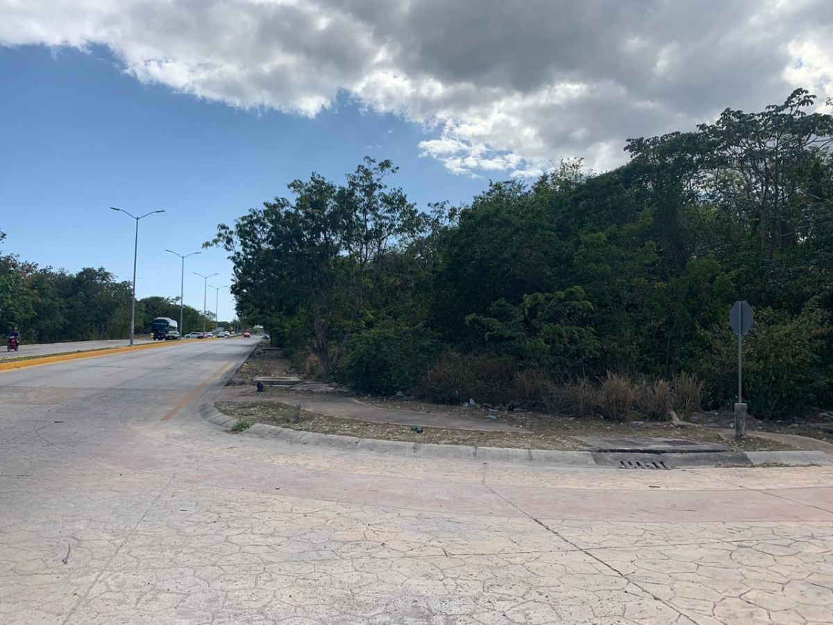 1 de 13: Vista tomada desde Paseo Central hacia de Av. Petempich