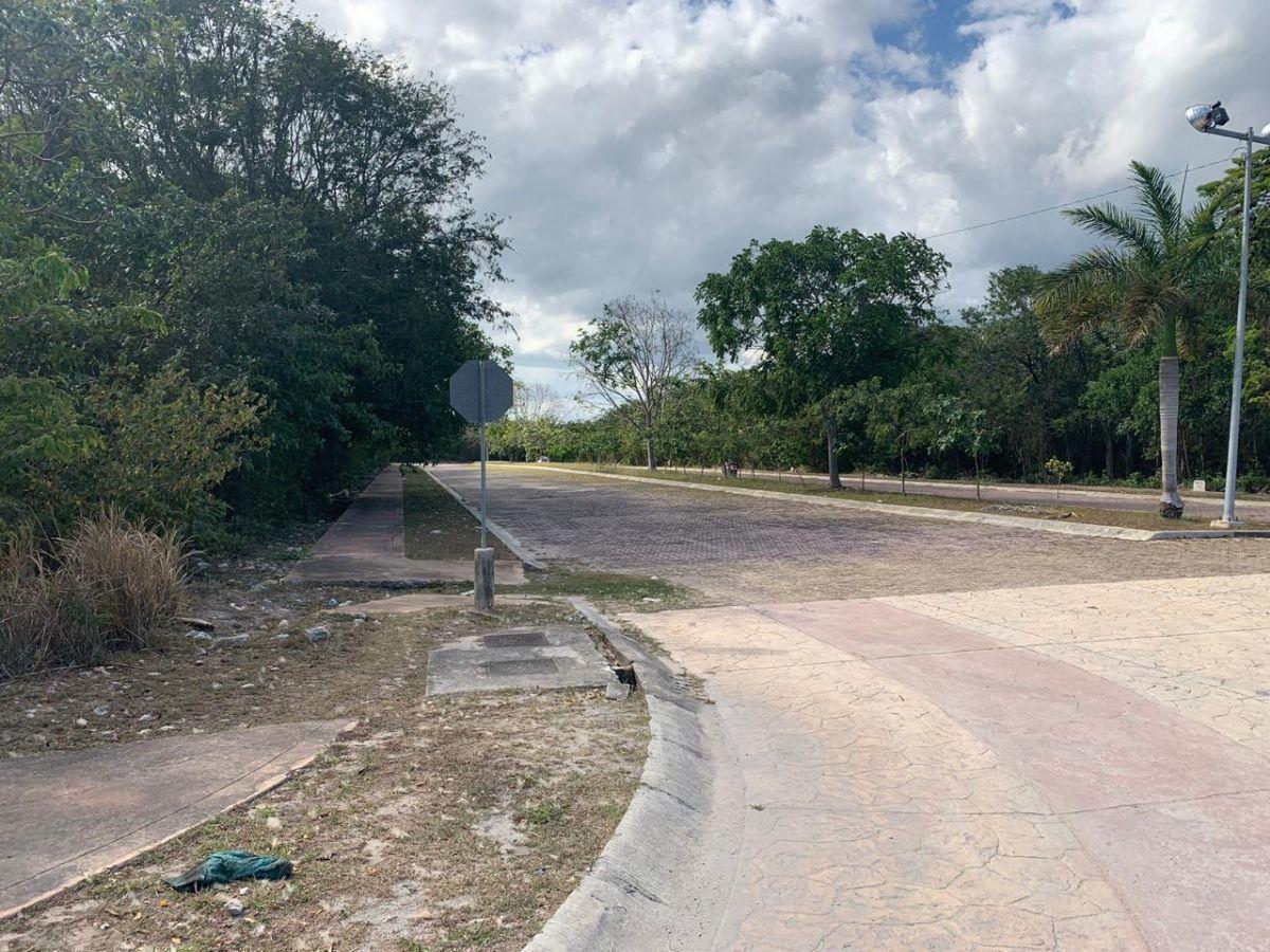 2 de 13: Vista tomada desde Av. Petempich hacia Paseo Central