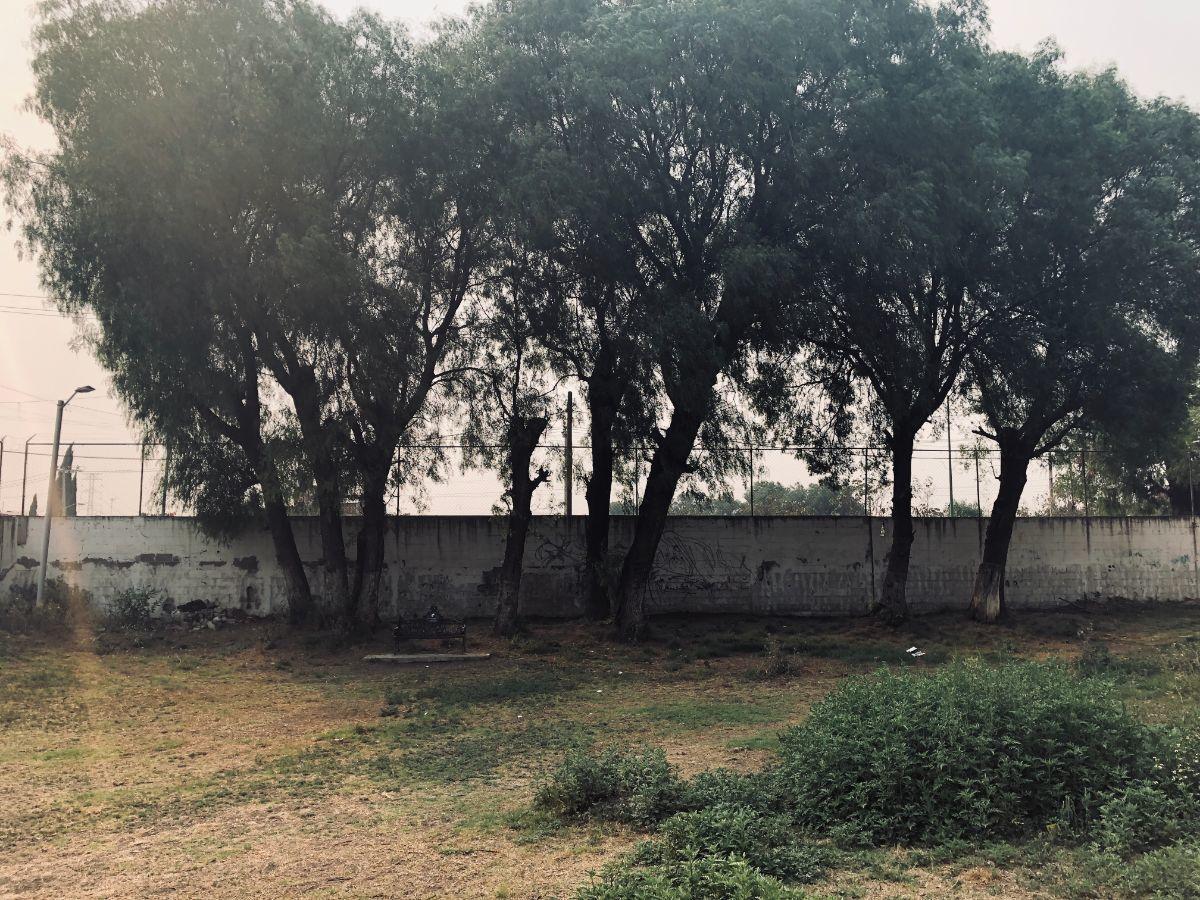 17 de 17: Jardín común trasera de privadas 2