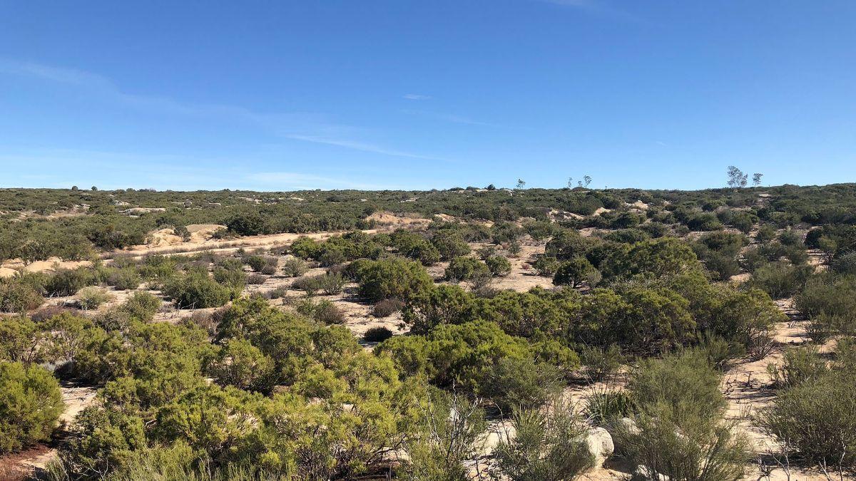 1 de 9: Terrenos en Venta en Tecate Baja California PMR-40