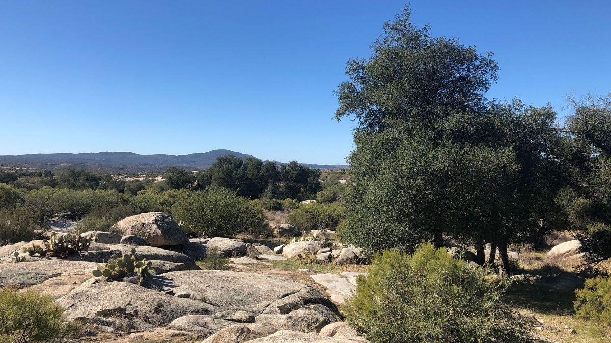 2 de 9: Terrenos en Venta en Tecate Baja California PMR-40