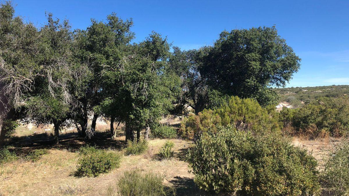 3 de 9: Terrenos en Venta en Tecate Baja California PMR-40