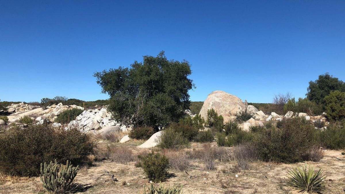 7 de 9: Terrenos en Venta en Tecate Baja California PMR-40