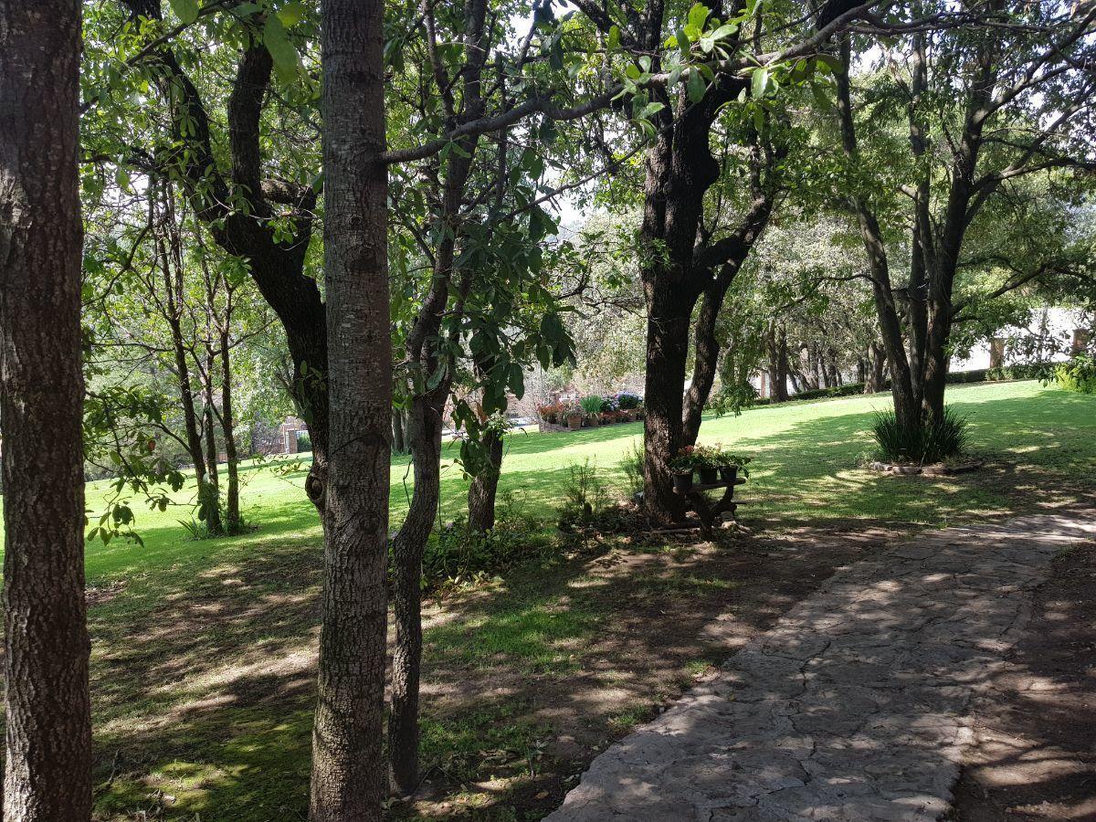 46 de 48: Jardín