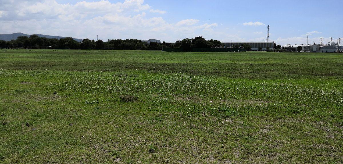 6 de 11: Vista parcial del terreno