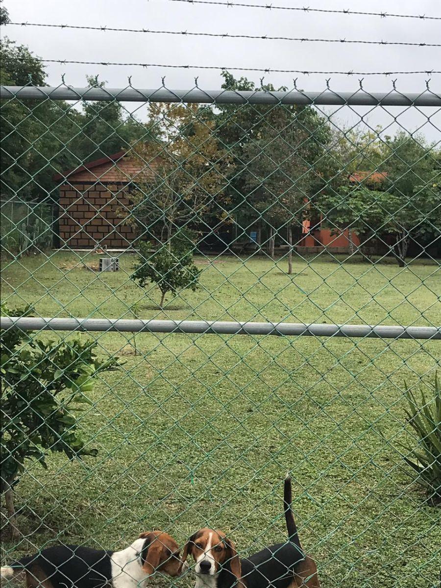 2 de 22: Vista desde la entrada de la propiedad