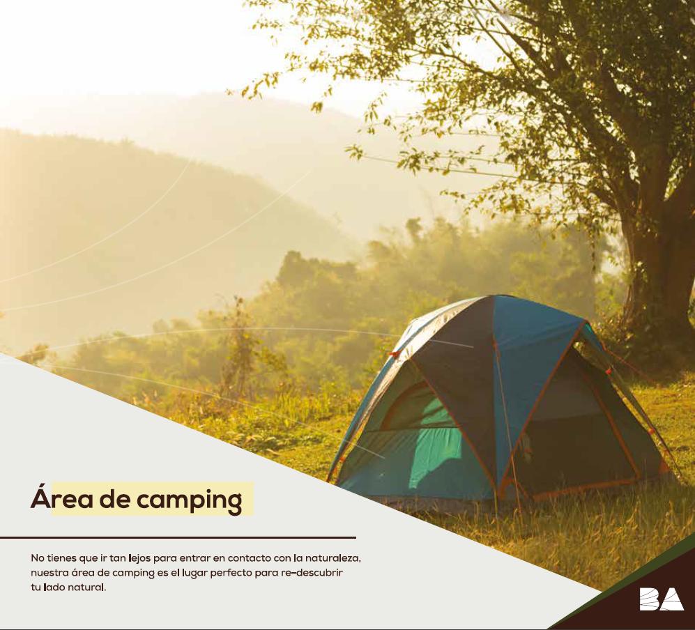 11 de 11: áreas de Camping