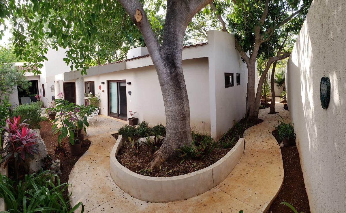 1 of 24: caminos y vegetación rodean la casa