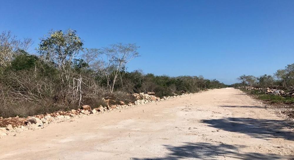 10 de 12: TERRENO PARA DESARROLLAR EN MERIDA YUCATAN CHICHEN REALTY