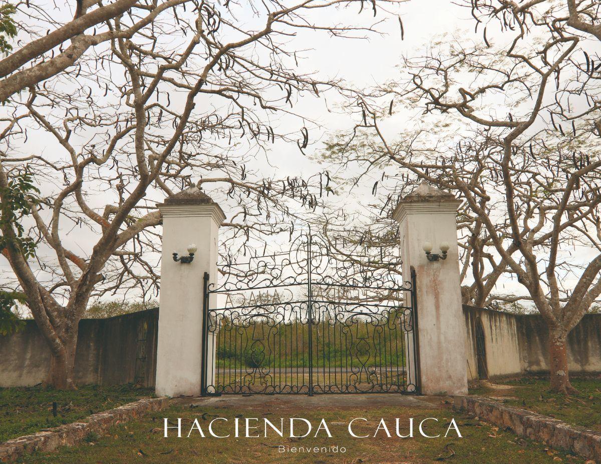 4 de 23: Hacienda en Venta Temax Mérida Yucatán Chichén Realty