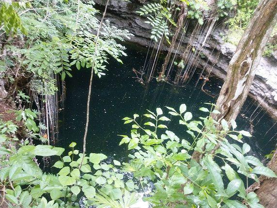 1 de 9: Cenote abierto, mas de 28 mts de diámetro