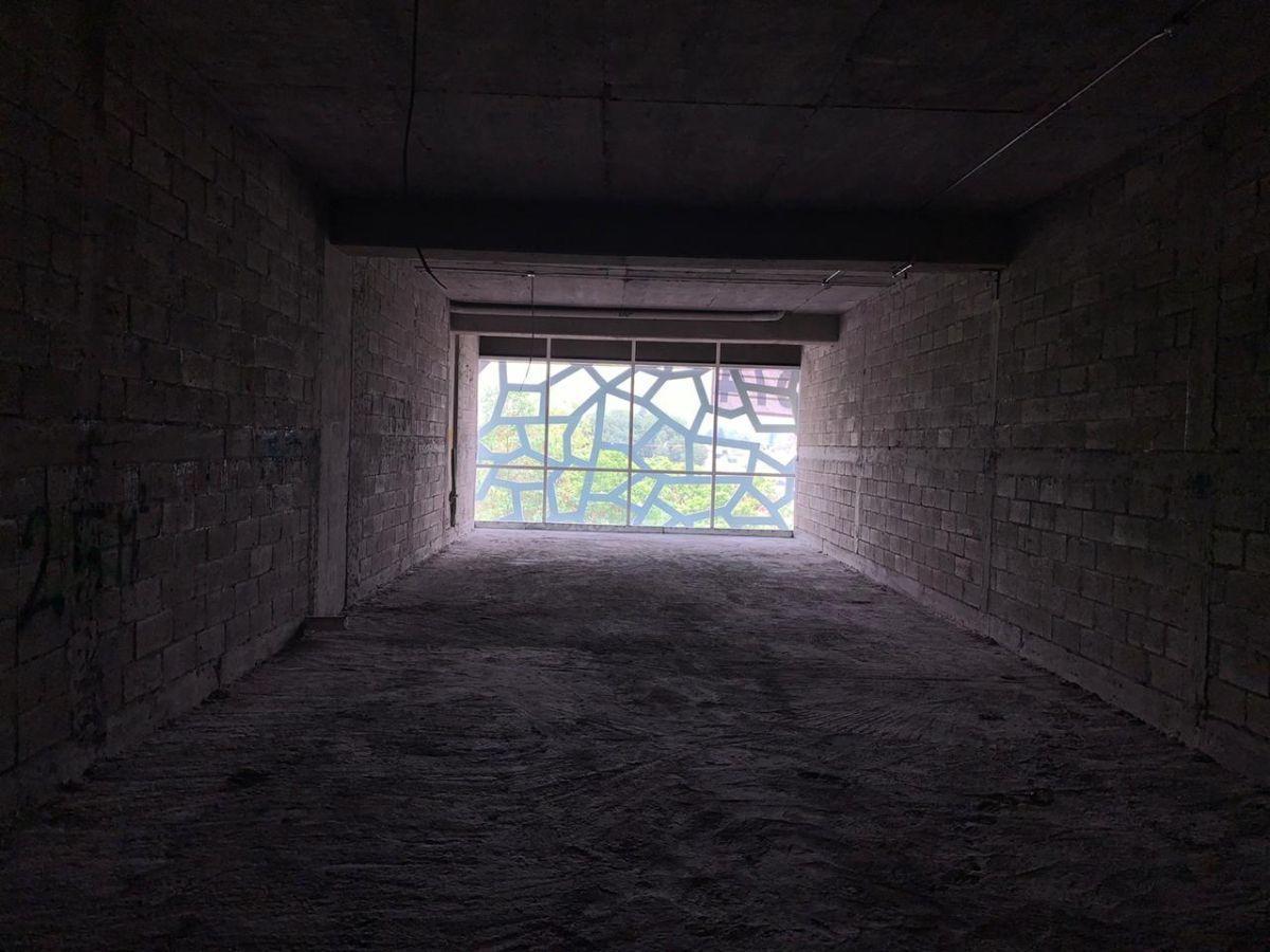 10 de 43: Toda la Sección 1100 m2