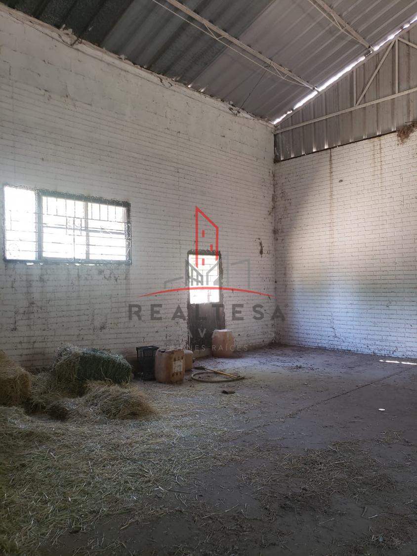 2 de 6: Interior de bodega