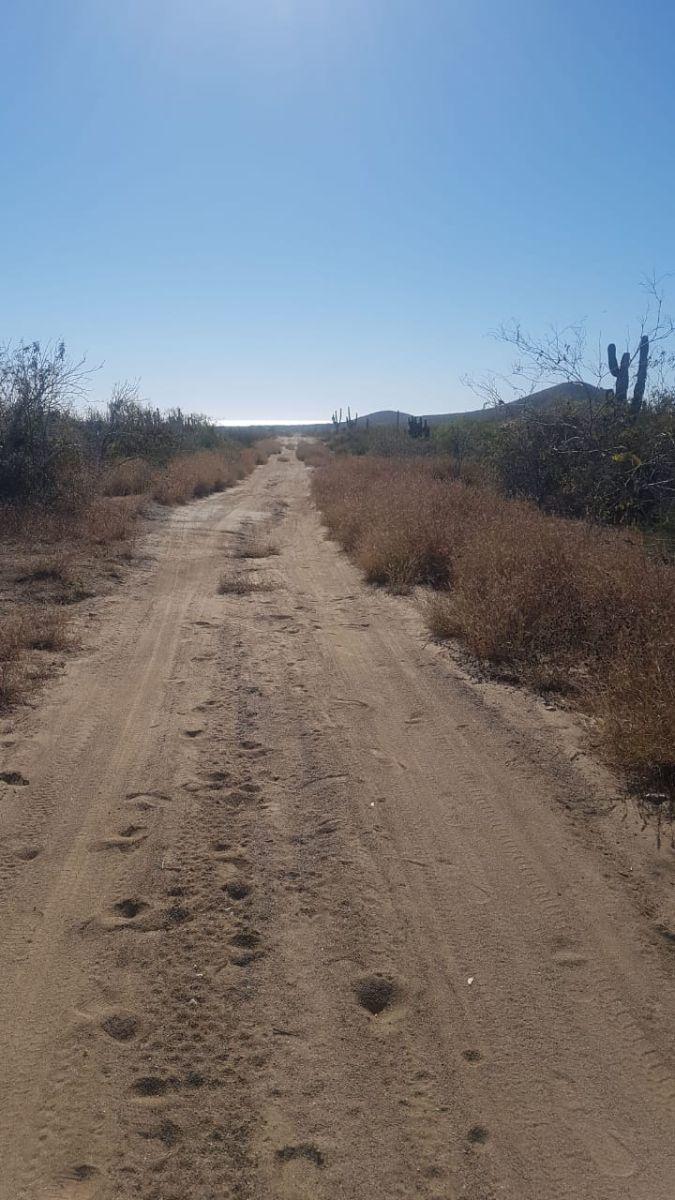 5 de 6: Terreno en cerritos camino