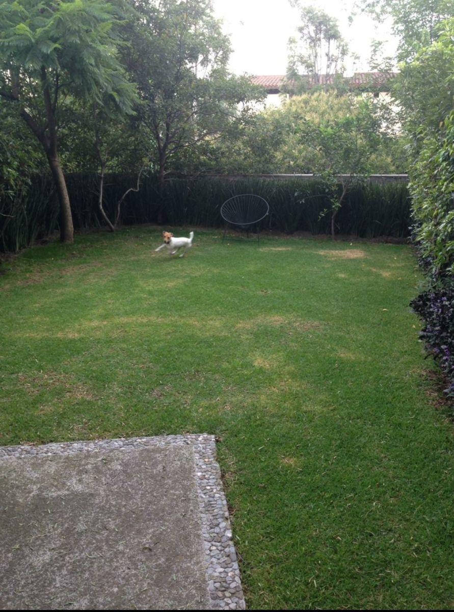 7 de 7: Jardin