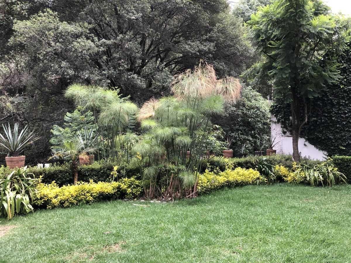 7 de 17: Jardín común con vista a la cañada