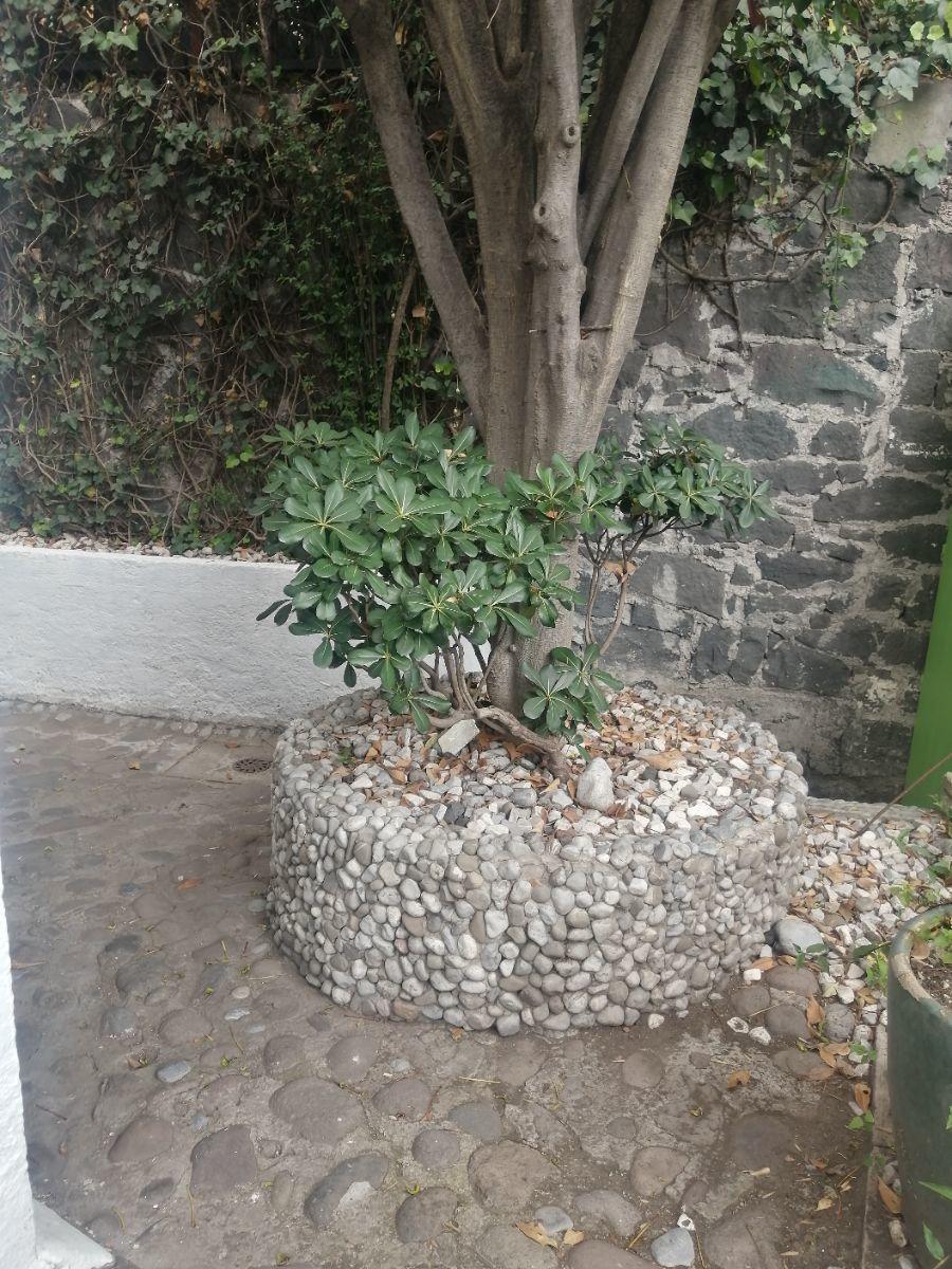 2 de 15: ENTRADA DEL DEPARTAMENTO