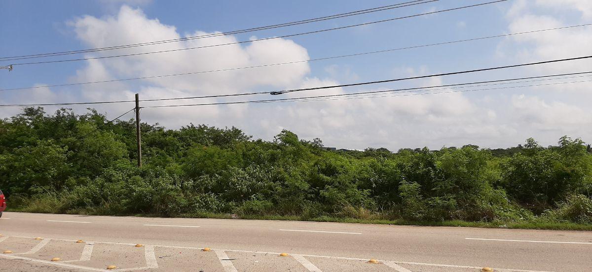 8 de 15: Terreno Venta Mérida, Yucatán, Periférico, Chichen Realty