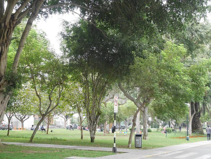 20 de 22: Exclusivo Parque Melitón Porras