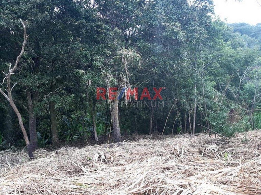 Remax real estate, Guatemala, Road to El Salvador, Terreno en Rancho Verde Km. 16.5 Carr. a El Salv.