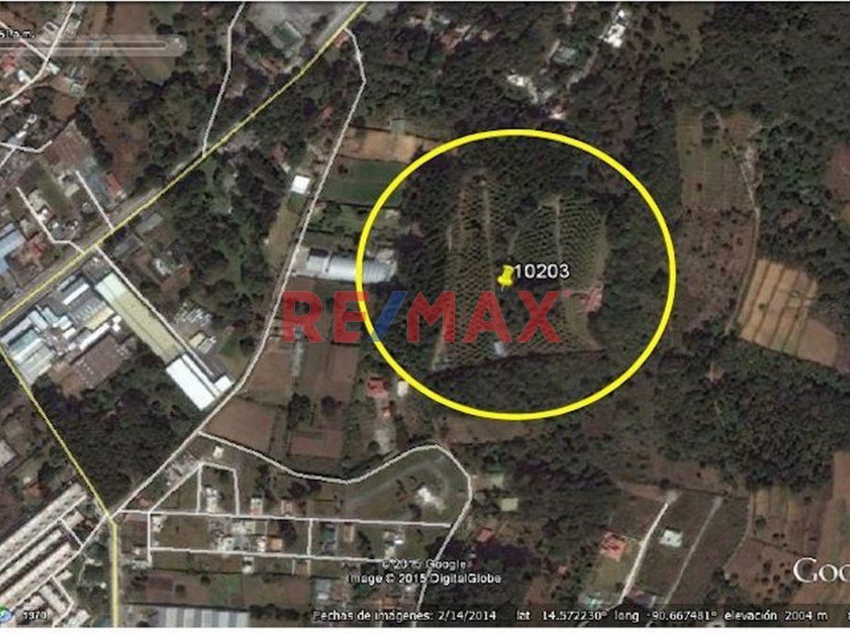 Remax real estate, Guatemala, Santa Lucia Milpas Altas, FINCA DE AGUACATE EN SANTO TOMAS MILPAS ALTAS