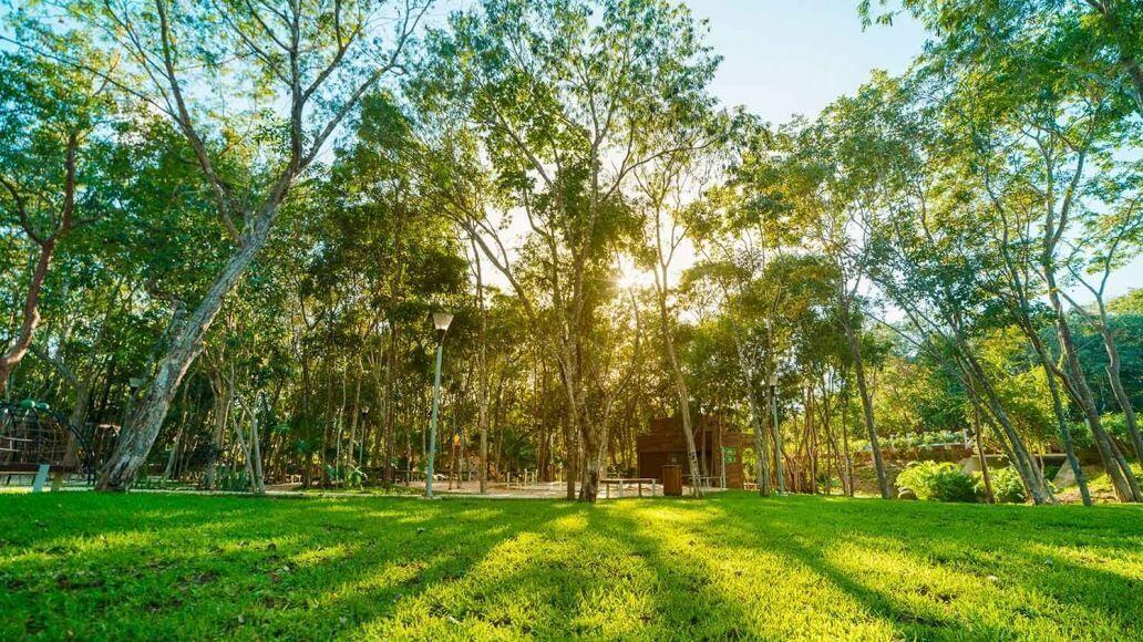 6 de 10: Áreas verdes