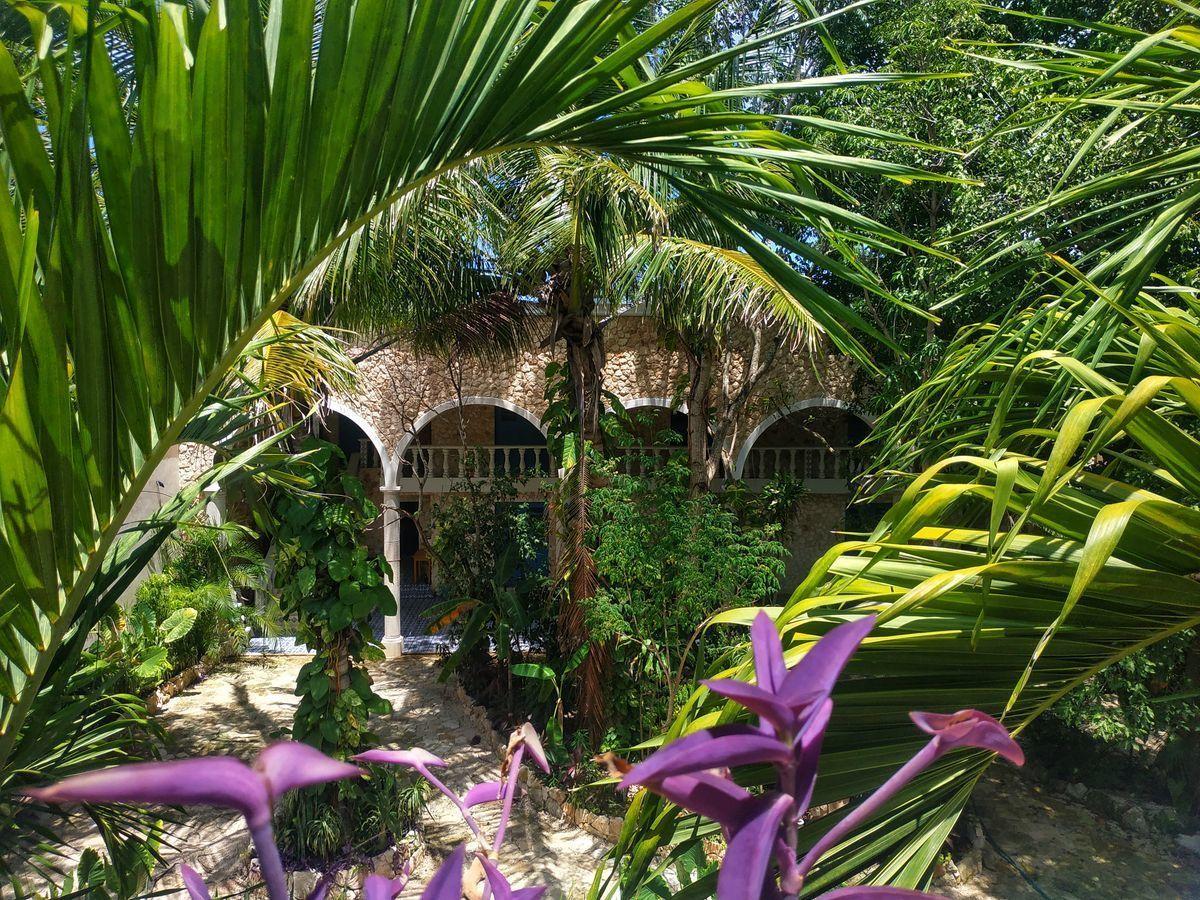 22 de 36: Vista al Jardín desde el Edificio 1