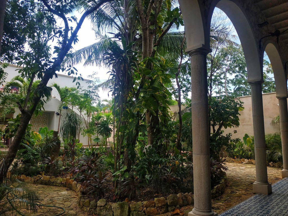 31 de 36: Vista del Jardín desde Edificio 2.