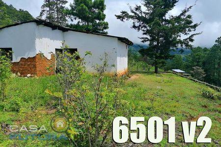 EB-GO8346