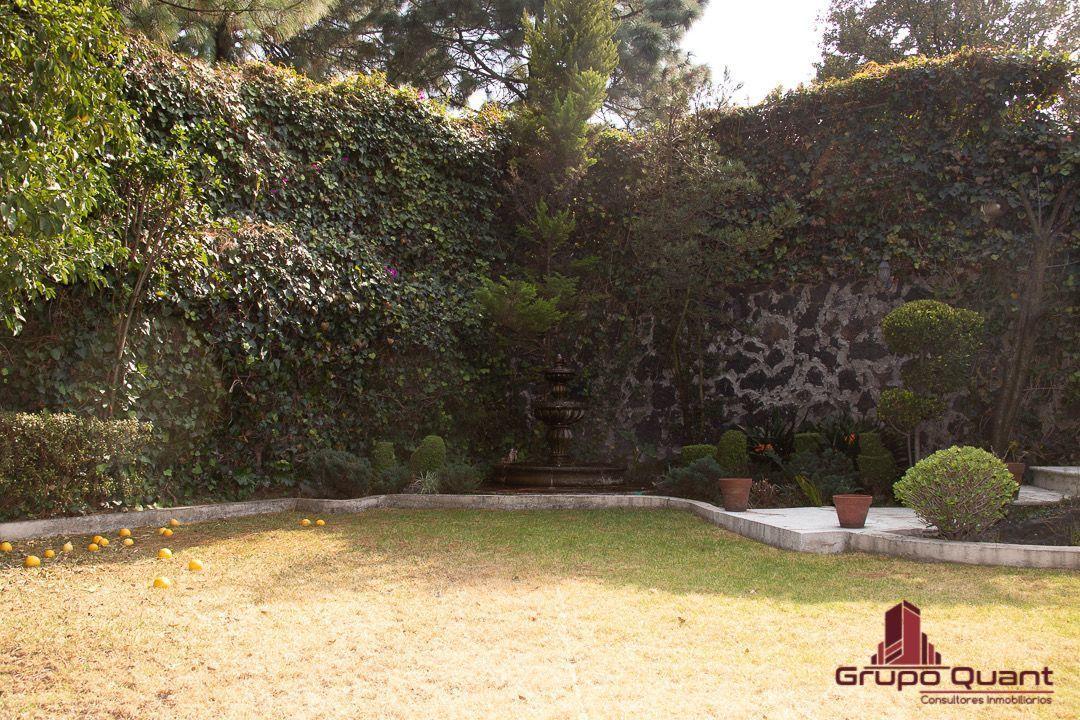 31 de 50: Jardín