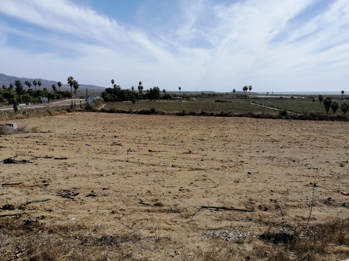 6 de 6: Tierra fértil para siembra