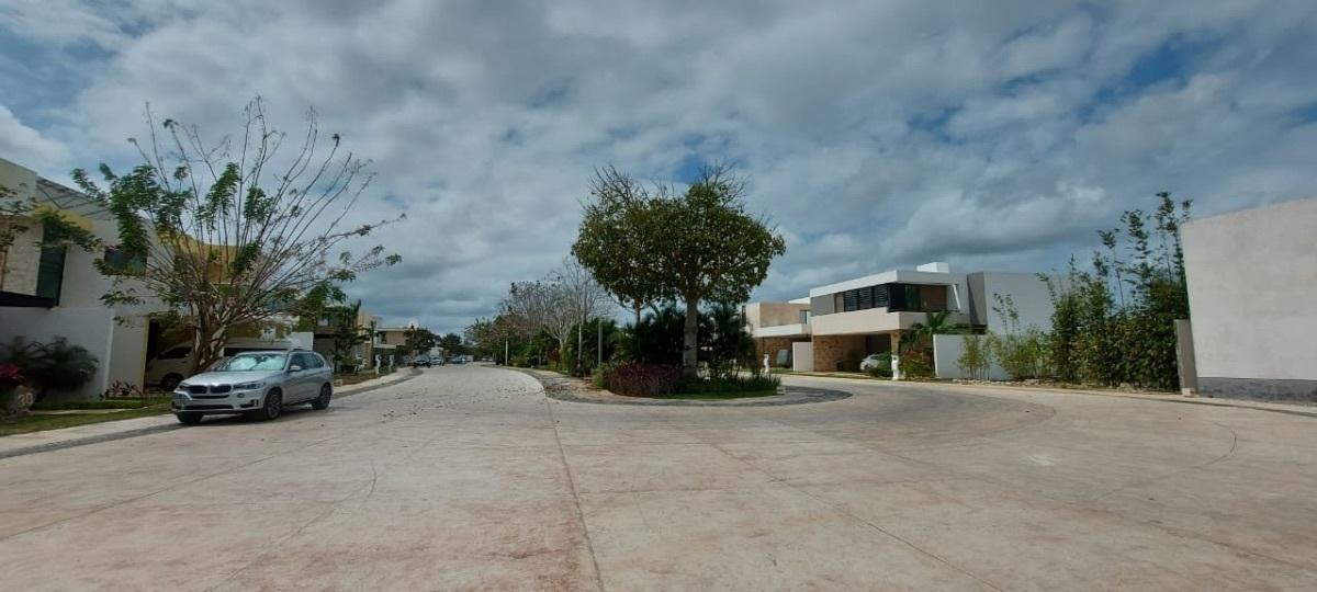 10 de 14: Avenidas amplias con jardines centrales.