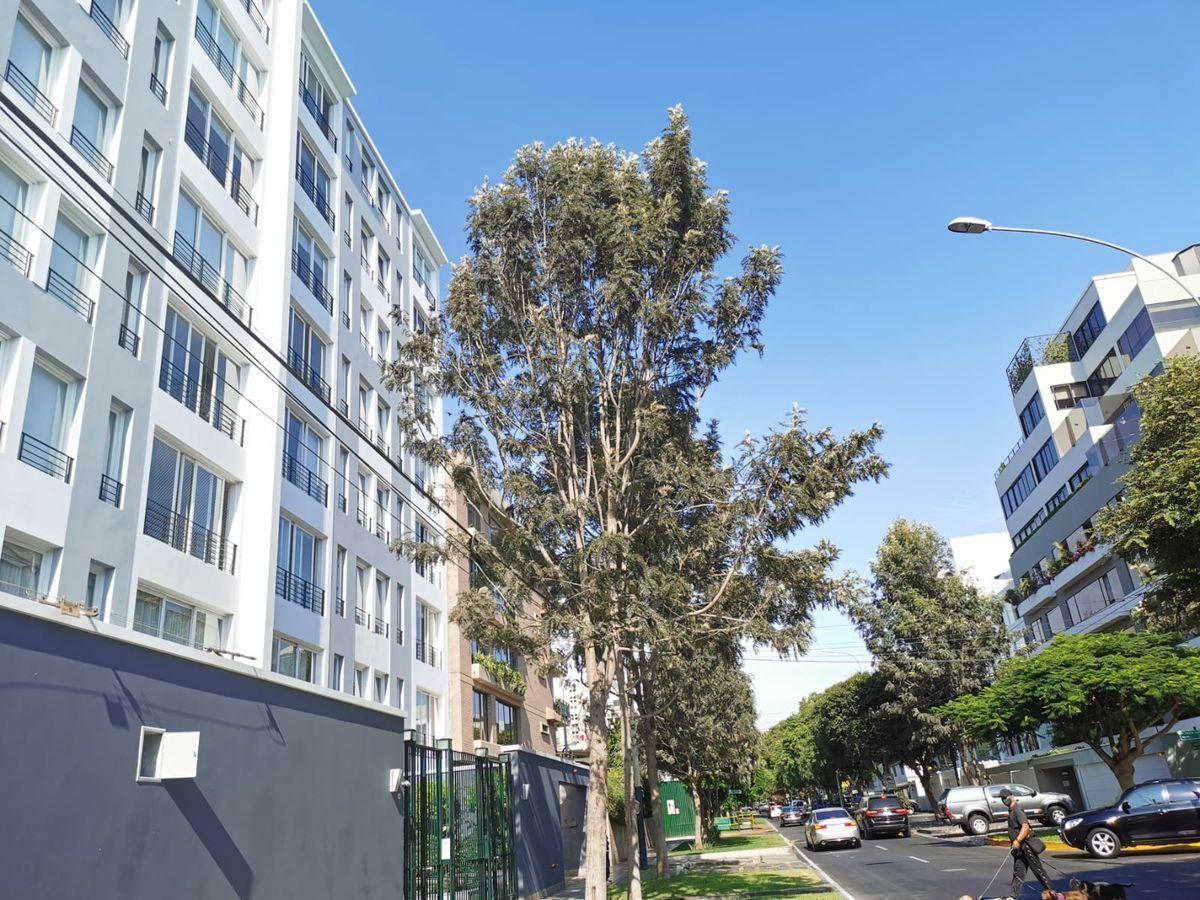 5 de 31: El edificio de Mario Lara es el de la izquierda de la foto