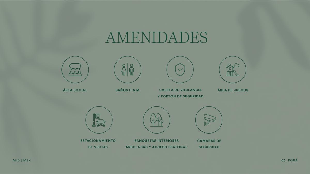 14 de 17: AMENIDADES