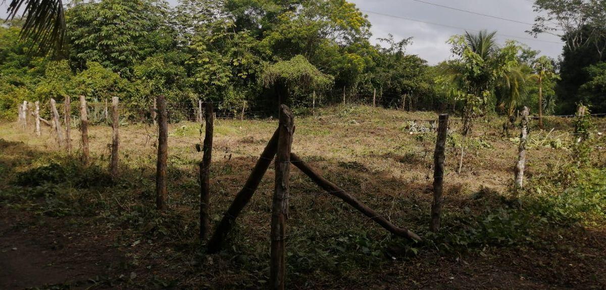 3 de 4: Terreno Cercado en Bacalar
