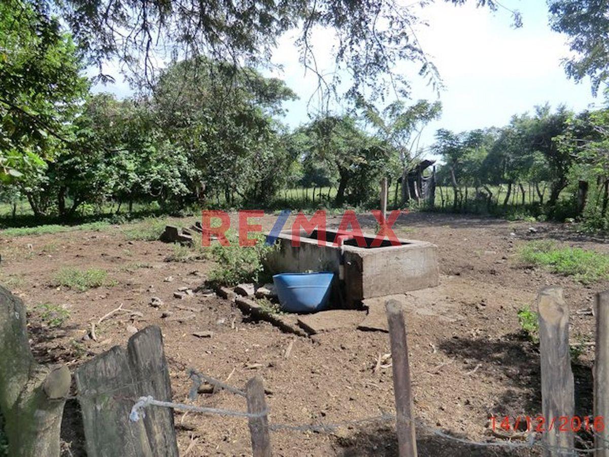 Remax real estate, Guatemala, Masagua, Terreno en Venta Km. 87.5 Carr. Vieja Puerto Cuyuta, Masagua