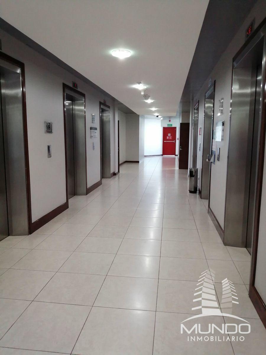 2 de 11: Pasillos a los elevadores