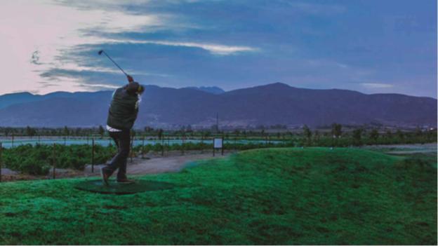 16 de 22: Golf