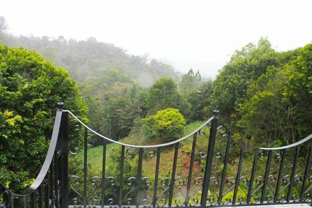 17 de 29: Balcón