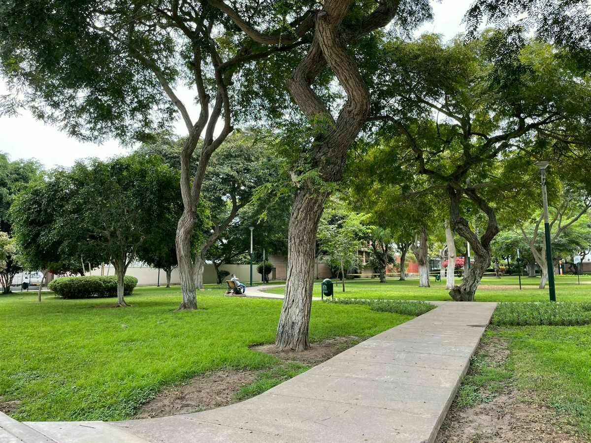 1 de 23: Parque Renán Elías.