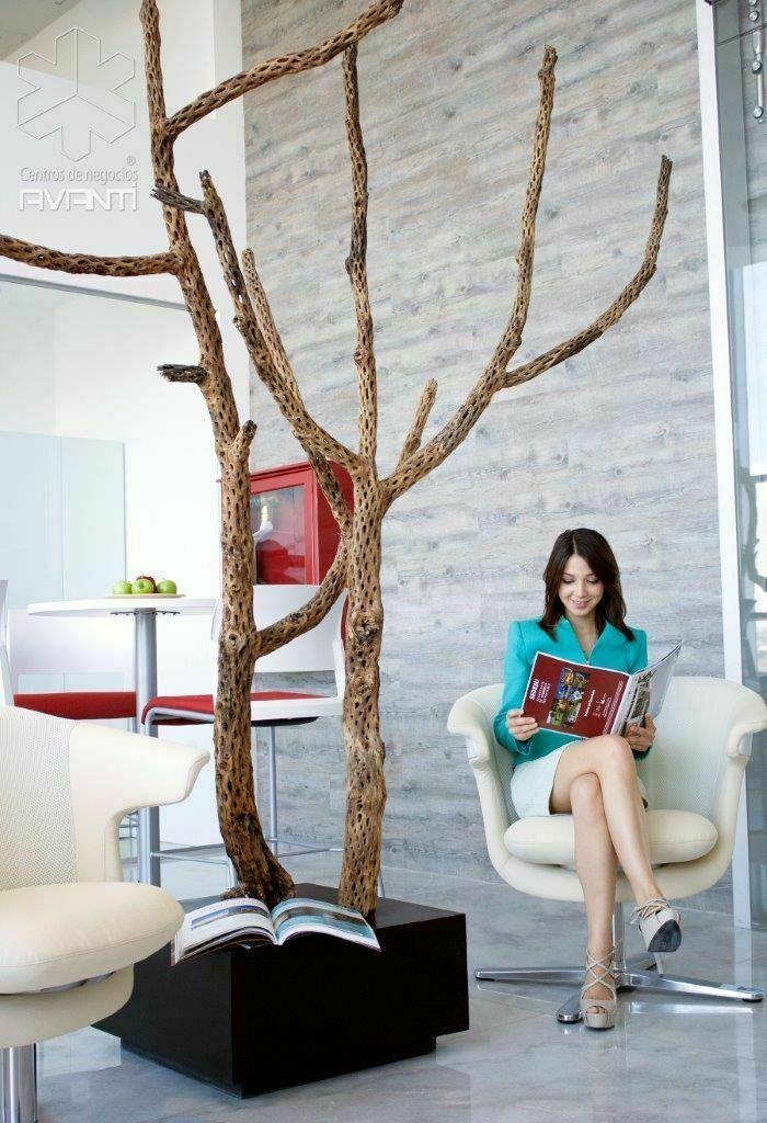 2 de 6: Concepto con alto diseño arquitectonico natural