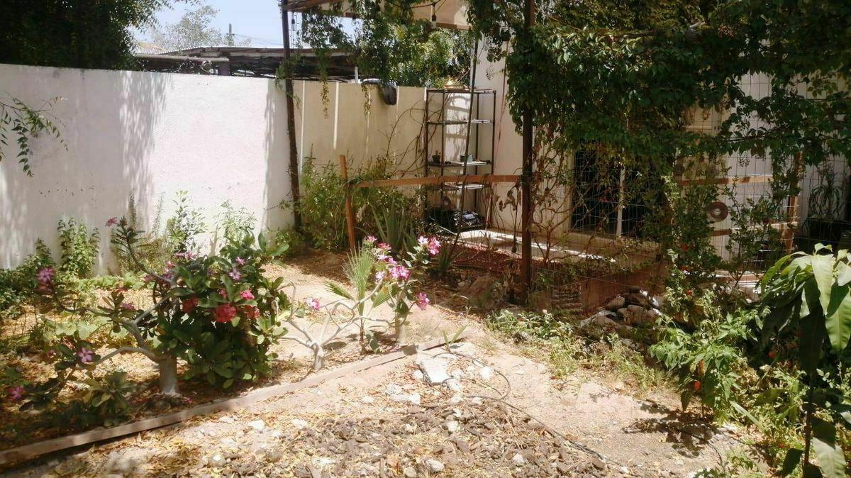 13 de 22: jardin parte trasera de la casa