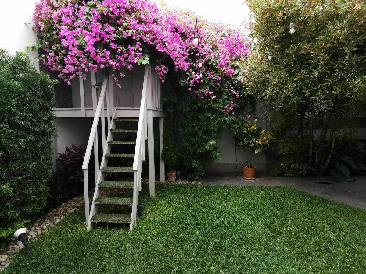 4 de 36: Hermosa casita en el árbol en el jardín de la casa