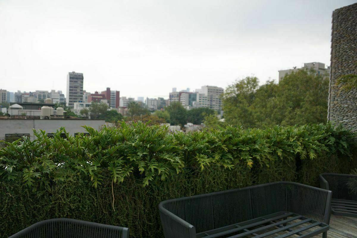 29 de 32: Roof Garden con barra para alimentos y asador.