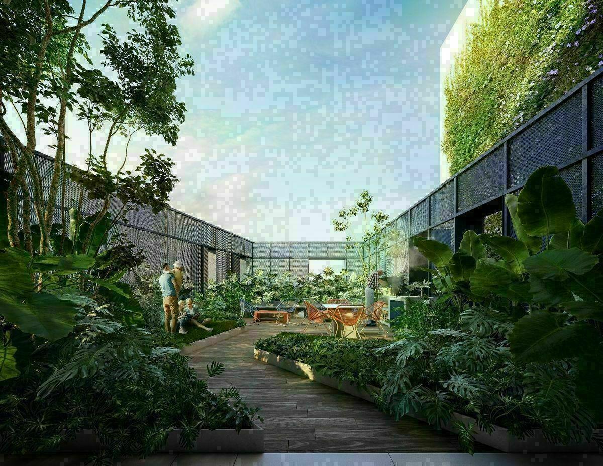11 de 17: Roof Garden