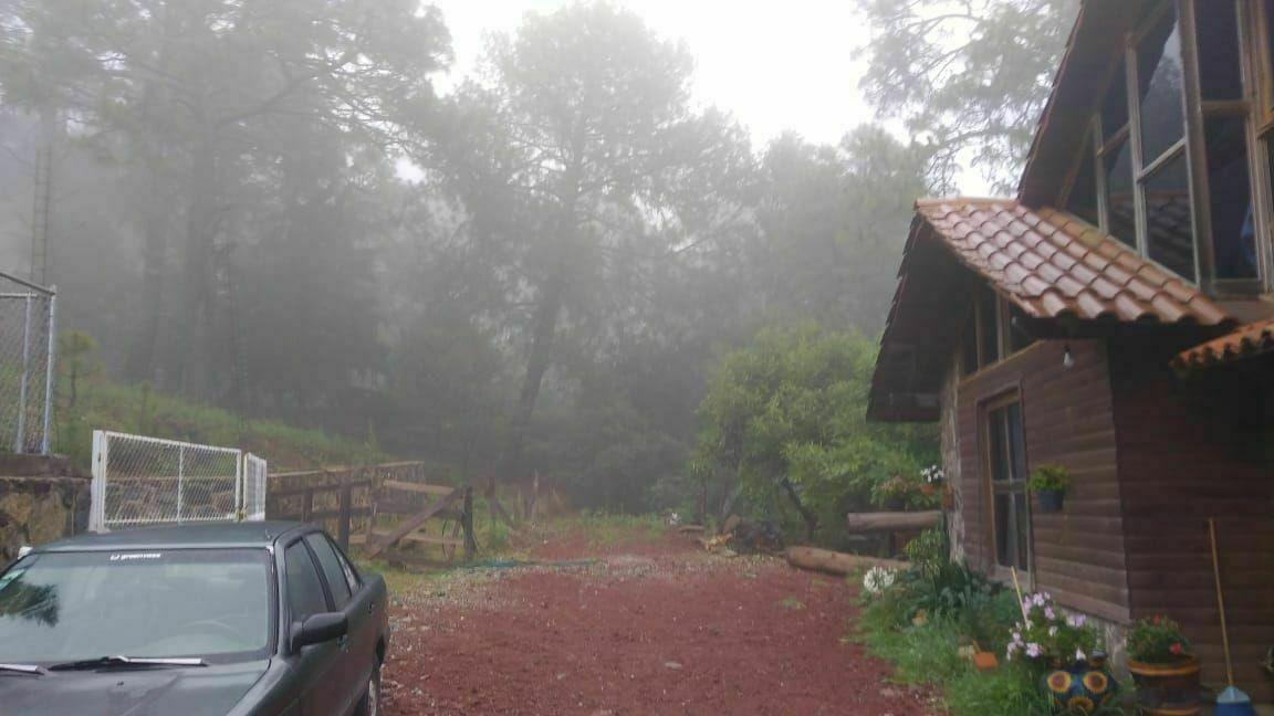 3 of 18: día con neblina