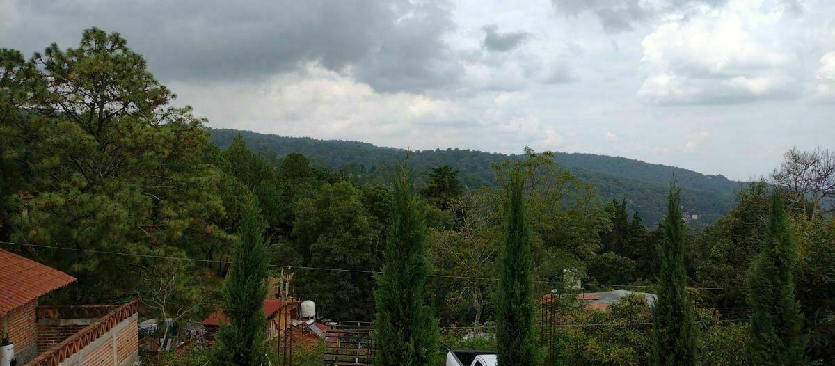 5 of 18: vista panorámica al bosque