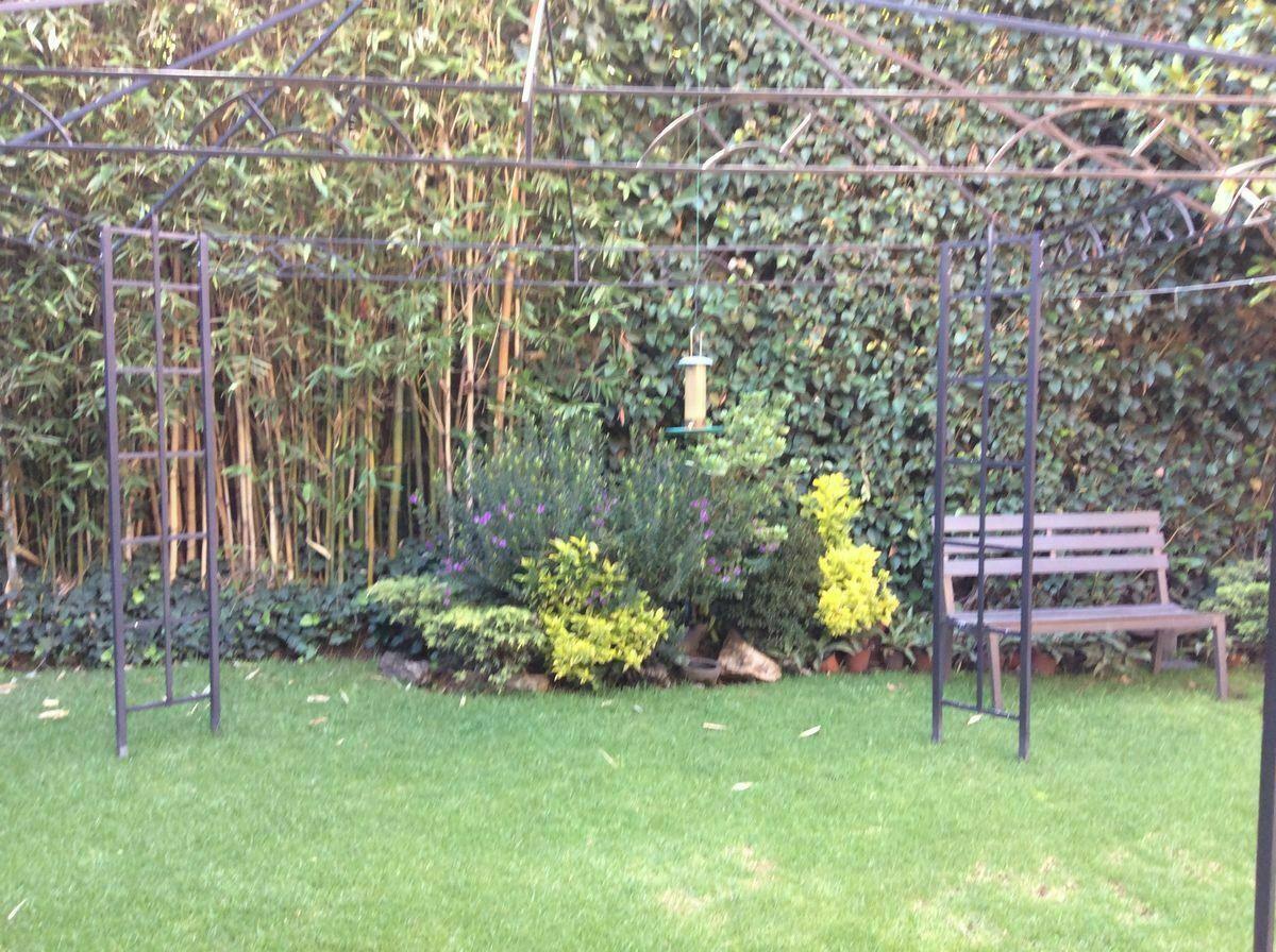 11 de 23: Jardín interior
