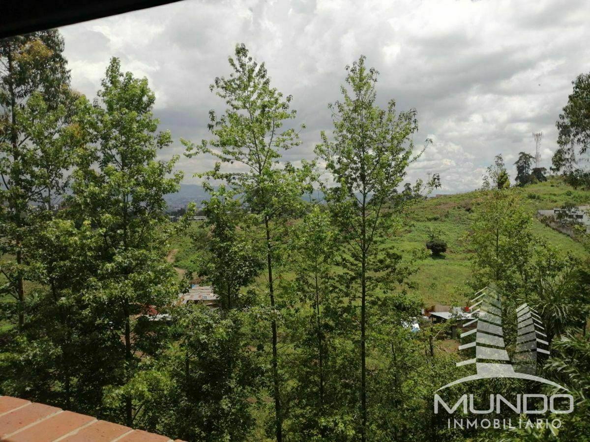 5 de 14: Vista desde el área del comedor