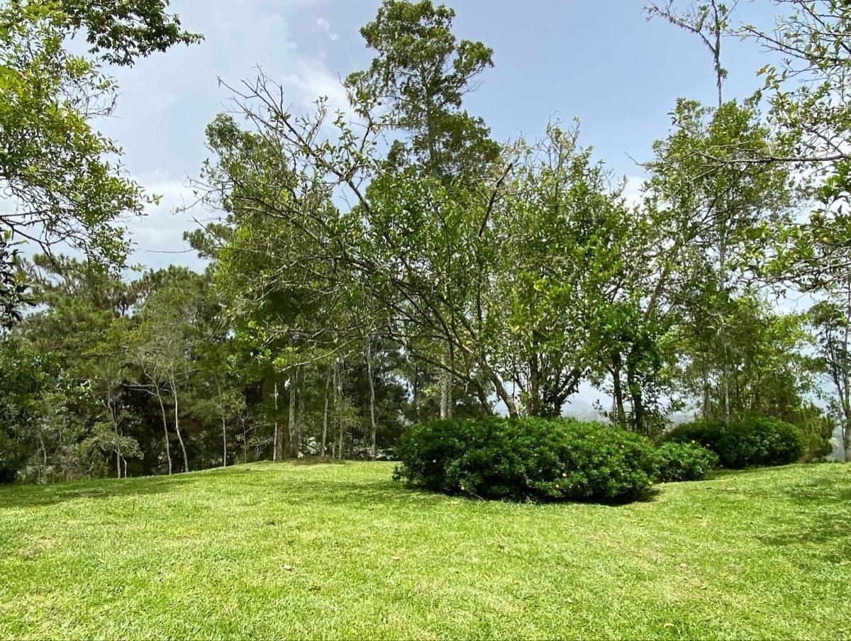 12 de 19: Amplias areas verdes